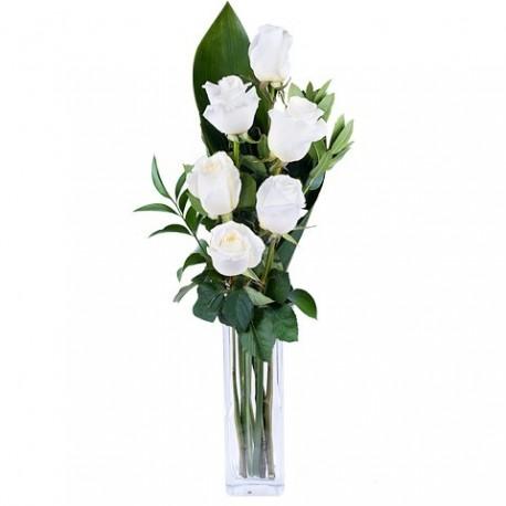 Ramo 6 rosas blancas, 6 white roses