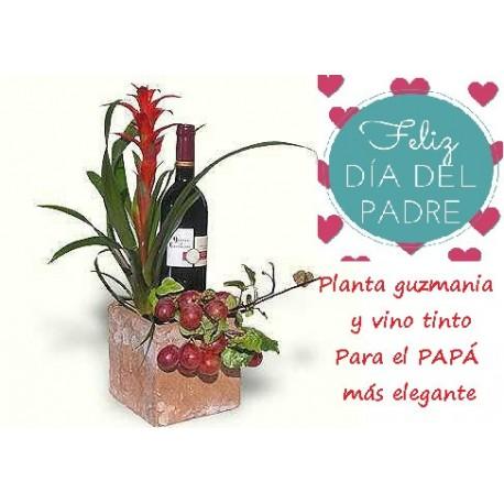 http://www.floresdemallorca.es/345-thickbox_default/papa-elegante.jpg