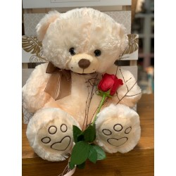 Big Teddy 50 CM and 3 roses